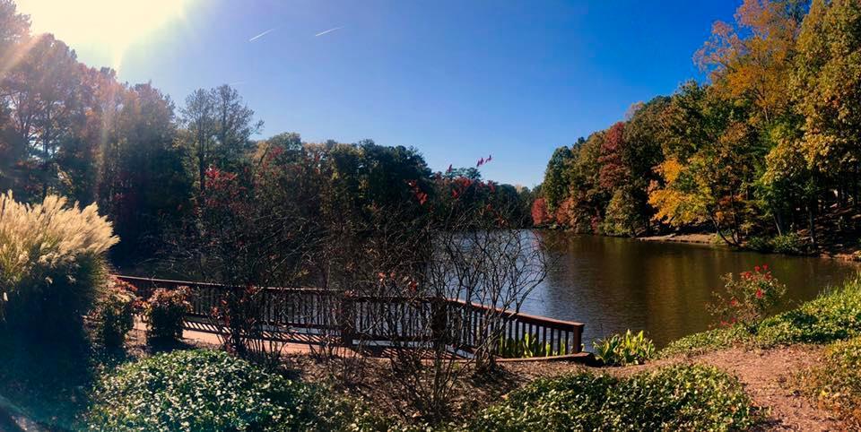 lake-overlook